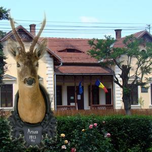 muzeul-de-vanatoare-rosen-villa-sibiu